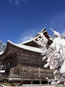 法福寺 紅梅と雪